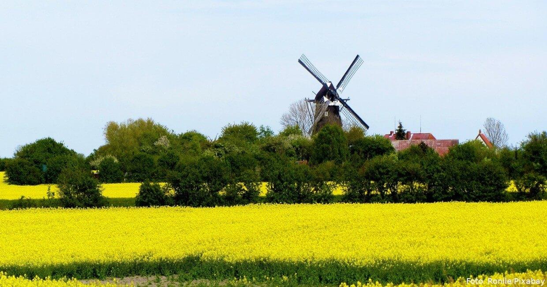 "Windmühle ""Jachen Flük"" in Lemkenhafen"