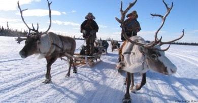 Skifahren Schweden: Skiurlaub  & Winterurlaub online buchen